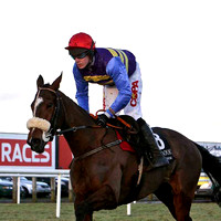 Tico 13th, Jockey Mr B O'Neill - FT8E0037-e