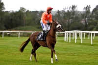 2012/09/14th - Race 1 - The Lunn's European Breeders Fund Maiden of 10,500 Euro at Down Royal