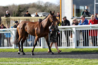 Carsonstown Boy - second in the CGA Foxhunter Chase at Cheltenham -FT8E4341-19