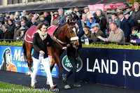 JLT INH Flat Race at Punchestown