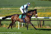 08th Illtakeitfromhere ( 1 , light blue, blue hoop ) and D.J. Mullins (5) - Trainer : Paul Nolan - Owner : Philip Byrne