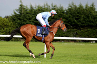 8th Battle Pride ( 1 ) - light blue, orange epaulettes ( F M Berry ) : Trainer - Richard Hannon