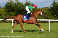 2nd Panama Hat ( 4 ) - emerald green, red chevron ( Chris Hayes ) : Trainer - A Oliver