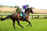 01st Gold Patrol ( 3 , purple, green cap ) and M.P. Fogarty - Trainer : Colin Bowe - Owner : Mountfinn Racing Partnership