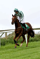 Wee Giant , Jockey Ruby Walsh - winner - CU2D2223-e