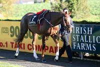 03rd Shadow Catcher (GB) ( 7 , dark blue, yellow diamond ) and K.C. Sexton - Trainer : Gordon Elliott - Owner : Mrs P Sloan