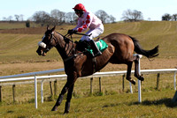 2013/04/03rd  - Race 1 The Bet at Toals Bookmakers on Course SP Shop Maiden Hurdle of 7,500 Euro at Downpatrick Race Course