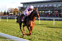 2016-11-05th - Race 4 - The JNwine.com Champion Chase (Grade 1) of 140,000 Euro