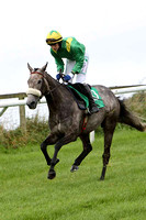 Black Rock Lake , Jockey P Townend - 3rd - CU2D2221-e