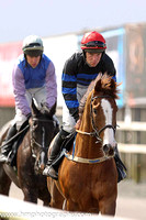 18th The Drunken Doctor ( 16 , black and royal blue hoops ) and Patrick Corbett - Trainer :Naill Moran - Owner : Eric Browne