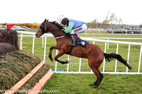 02nd St Killenagh ( 4 , blue, green sleeves ) and Mr J J King - Trainer : R K Watson - Owner : R K Watson