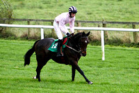 Nanna Maura , 2nd - Jockey E J O'Connell - FT8E5174-e
