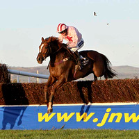 2011/11/04th - Race 6 - 1535 - Down Royal  -  Robinson Services Handicap Chase of 15,000 Euro
