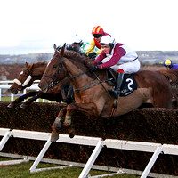 Bobs Way (2) PU, Jockey B Browne - FT8E9943-e