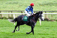 Special Raffle , 7th - Jockey S G McDermott - FT8E5179-e