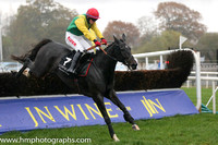 01 Sizing Solution and J J Burke - - 01st (7 ,emerald green, yellow chevron ) Trainer - J T R Dreaper