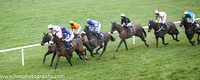08 Sandusky and John Winston - - 08th (1 ,royal blue and white hoops ) Trainer - Gordon Elliott