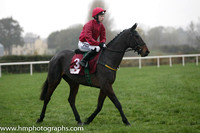 02 Snow Falcon and Ms N Carberry - - 02nd (3 ,cerise ) Trainer - N Meade