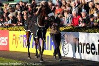 Orchid Transport Mares Novice Hurdle at Punchestown
