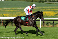 06th Bye Bye O Bye ( 5 , white, red chevron ) and M.A. Enright - Trainer : Muredach Kelly - Owner : D. Grealish