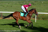05th F Edeymi ( 2 , maroon, white star ) and B.J. Cooper - Trainer : A.J.Martin - Owner : Gigginstown House Stud