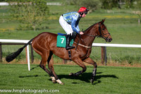 03rd The Cub ( 7 , green and blue stripes ) and A.E. Lynch - Trainer : Thomas O'Neill - Owner : Party Boys Syndicate