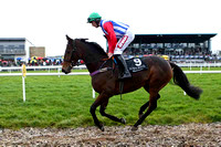 2011/11/02nd - Race 2 The European Breeders Fund Lough Construction Ltd Mares Novice Hurdle