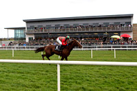2012/11/02nd - Race 5 The Porter & Co Beginners Steeplechase of 12,500 Euro at Down Royal