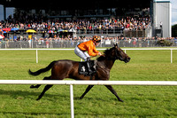 1st No 4 Peace Mission (IRE) (1) - Jockey: G F Carroll - Trainer: T Mullins - Colours: orange, brown sash