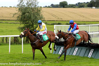 02nd Tiger Bay Lady ( 2 , royal blue and white hlvd ) and J.J. Burke - Trainer : Peter Fahey - Owner : Bogmen Syndicate