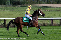 Breffni Gael ( 12 , yellow, purple stars ) and R.C. Colgan - Trainer : M.V.Manning - Owner : Pennyhill Punters Club