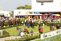 \Downpatrick Parade Ring