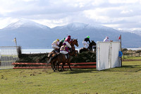 Point to Point racing at Tyrella in the shadow of the Mourne Mountains