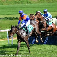 12th Youandiwillfly and Mr M C O?Donovan 7 ( 12 , blue orange cross ) Trainer - D E Fitzgerald , Owner - Donal Barnwell