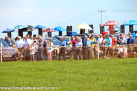 Spectators enjoying the sunshine at the Route Hunt Point to Point at Portrush