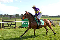 The Amarillo Kid & P Townend - Winner (3, purple and yellow quartered) - CU2D2259-e
