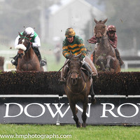 01 Blissful Moment & P Carberry - winners (9, emerald green and orange hooped ) - IMG_9510-2