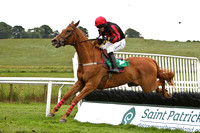 2010/07/13th - Race 1 - 1450 - The Mr Baileys Maiden Hurdle of 7,500 Euro