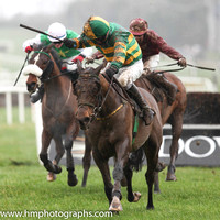 01 Blissful Moment & P Carberry - winners (9, emerald green and orange hooped ) - IMG_9514-6
