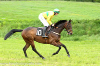 2014/05/17th  - Race 6 The Fermanagh Harriers Hunt Point to Point at Necarne