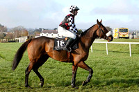 Drumlister , 16th - Jockey - D J Casey - FT8E6841-e