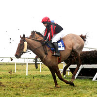 2010/12/30th - Race 6 - Down Royal - Irish Thoroughbred Breeders Northern Region Chase of 7,000 Euro