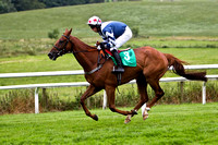 2010/07/13th - Race 5 - 1540 - Down Royal - The Baileys Racing Range Handicap Hurdle of 7,000 Euro