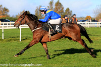 07th Auld Brig and M P Walsh ( 2 , royal blue, yellow sash ) Trainer - M Brassil , Owner - Promising Silver Syndicate