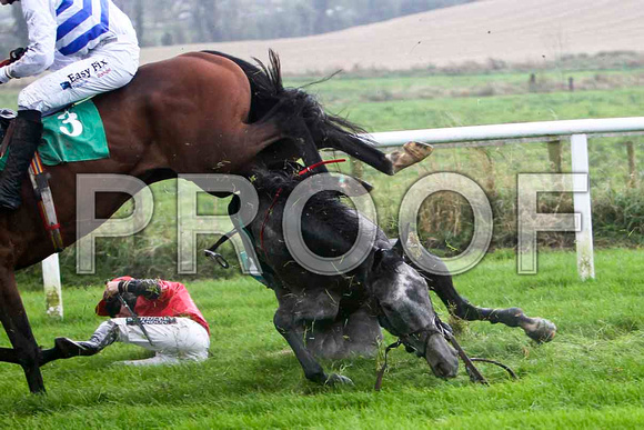 Jack Bene , Fell - Jockey P T Enright - FT8E5219-e