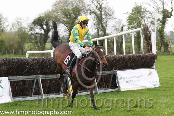 02nd Brooklyn Babe ( 6 ) and J J Codd - Trainer : W F Codd - yellow, emeraldgreen, yellow spot sleeves