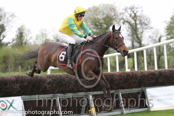 02nd Brooklyn Babe ( 6 ) and J J Codd - Trainer : W F Codd - yellow, emerald green, yellow spot sleeves
