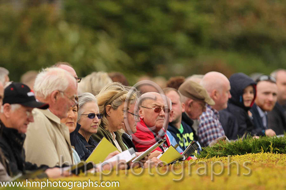 Spectators at Down Royal