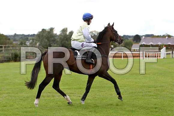 Harrington , Jockey Mr B T O'Connell  - CU2D1984-e