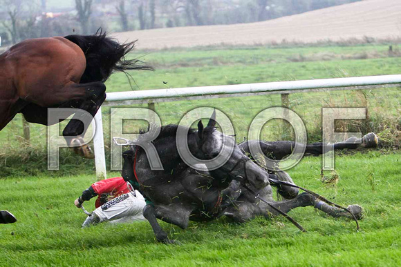 Jack Bene , Fell - Jockey P T Enright - FT8E5220-e